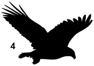 Fönsterfåglar